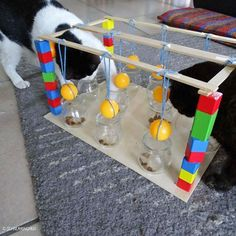 Cat toys aren't all fun and games for your cat; whether elaborate or simple, toys give your cat exercise, mental stimulation, a chance to act on hunting instincts, and a way to bond with you. Here are a few things to know about picking the right cat toys. Homemade Cat Toys, Diy Cat Toys, Dog Toys, Dog Enrichment, Cat Exercise, Cat Room, Cat Facts, Cat Tree, Cat Furniture
