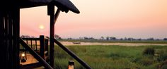 Eagle Island lodge is on an island in the Okavango Delta.  Safaris are done by dug out canoes or walking safaris.  For bird watchers!  This was the 4th camp we stayed in and it was definitely a nice respite and change of pace.