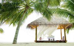 #palms #beach #pavilion