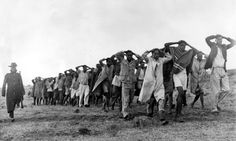 A round up of Mau Mau suspects being led away for questioning by police in Kenya in 1952. Photograph: Popperfoto/Popperfoto/Getty Images