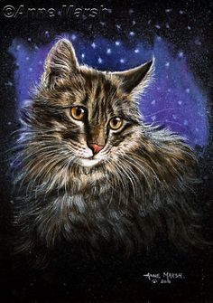 TABBY CAT MAINE COON DREAM PRINT PAINTING ANNE MARSH