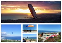 Paragliding Hermanus Contact Bevan Pope 072 495 5444 Stuff To Do, Things To Do, Our Town, Great White Shark, Paragliding, Whale Watching, Places To Eat, Day Trips, Mountain Biking