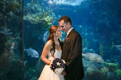 My favorite picture from our Florida Aquarium Wedding. #Ocean Wedding # Under the sea