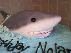 double layer 1/2 sheet cake, frosted, with RKT shark covered in fondant and airbrushed