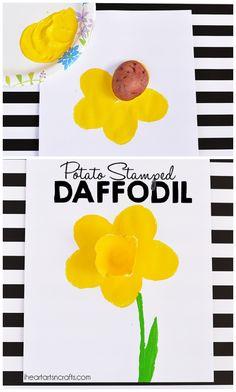 Potato Stamped Daffo