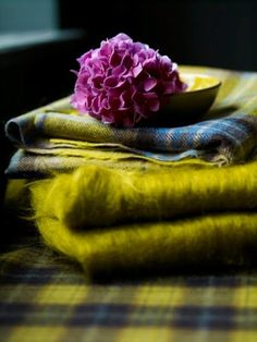 Chartreuse tartan and fuzzy blanket
