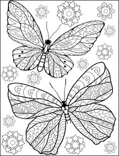 Butterflies coloring page Coloring Book Art, Cool Coloring Pages, Animal Coloring Pages, Mandala Coloring, Adult Coloring Pages, Coloring Pages For Kids, Coloring Sheets, Butterfly Coloring Page, Butterfly Drawing