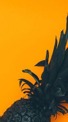Insos Source by loreasis Mobile Wallpaper, Tier Wallpaper, Food Wallpaper, Apple Wallpaper, Tumblr Wallpaper, Animal Wallpaper, Colorful Wallpaper, Black Wallpaper, Flower Wallpaper