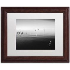 Trademark Fine Art 11 Herons Canvas Art by Moises Levy White Matte, Wood Frame, Size: 11 x 14, Gray