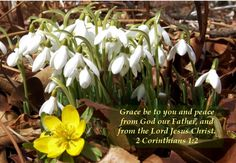 2 Corinthians 1:2 KJV ...Grace and Peace