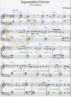 Ed Sheeran — Supermarket Flowers  Piano Sheet Music Download PDF