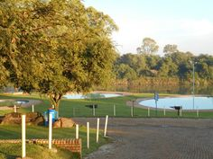 Wawielpark Golf Courses, Sports, Hs Sports, Excercise, Sport, Exercise