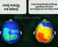 Read Memy Musi from the story Memy To Życie. Stupid Funny Memes, Wtf Funny, Hilarious, Funny Picture Quotes, Funny Pictures, Female Anime Eyes, Funny Lyrics, Polish Memes, Weekend Humor