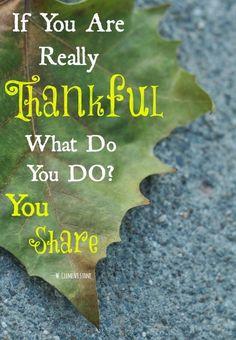 16 Thanksgiving Quotes About Gratitude & Grace