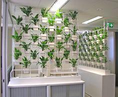 Vertical Garden Design on Vertical Gardens   Stunning Living Wall Of Indoor Plants