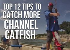 Top 12 Channel Catfish Tips, Start Catching More Catfish How To Catch Catfish, Big Catfish, Catfish Bait, Catfish Fishing, Crappie Fishing, Carp Fishing, Kayak Fishing, Fishing Tips, Fishing Boats