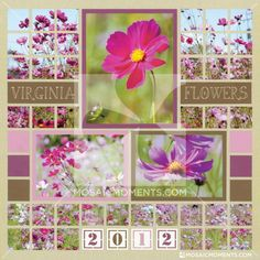Flower Scrapbook Page - Get Photography and scrapbook layout tips for creating a stunning flower page. This is also a lovely mosaic pattern perfect for flowers