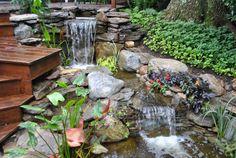 Backyard waterfall in Madison, NJ