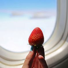 Traveling can be tough, especially when it comes to food. Airport options are either super overpriced or just not that good for you. Save yourself the trouble and pack these dietitian-approved, TSA-friendly travel snacks.