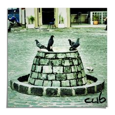 antigo bebedouro para cavalos no Largo da Ordem, centro histórico