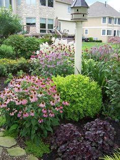 plant combos spirea, coneflowers and purple heuchera