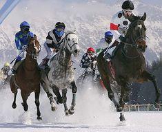 horse-race-on-snow-5