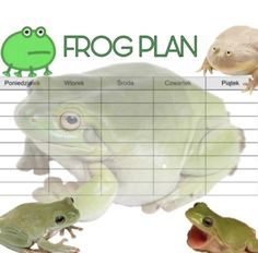 School Plan, Back To School, School Organization, Lol, How To Plan, Memes, School Organisation, Meme, Entering School