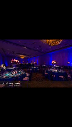 Wedding hall & decoration idea