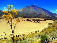 Canadas del Teide spring where the sun almost always shines and many tourists walk about or hike, as if they went to the beach.