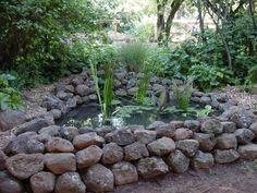 Garden Ponds - Image 1