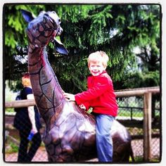 The Greater Vancouver Zoo. Just 45 minutes outside of Vancouver and home to lions and tigers and bears, oh my!