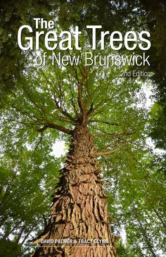 Department Of Environment, Discover Canada, New Brunswick, The Province, Antique Books, Habitats, Exotic, News, Nature