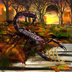 Scorpio BY CIRO MARCHETTI