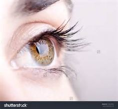 Eyesight becomes weak after the muscles around the eyes lose their elasticity and become rigid, thereby reducing the power to focus different distances. Yoga is good way to enhance vision. Dolphin Pose, Parts Of The Eye, Head Crown, Corpse Pose, The Retina, Third Eye Chakra, Stress And Anxiety, Fit Women, Draw Eyes