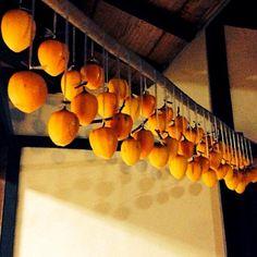 干し柿に初挑戦! こんな時間に完成。 干し柿って青空が似合うよね。 - 91件のもぐもぐ - 軒下の柿ちゃんたち by miyu