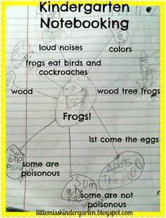 Little Miss Kindergarten - Lessons from the Little Red Schoolhouse!: Frogs and Fun!