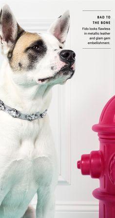 Guest Bark-tender: Jiff - Guest Bartender | BaubleBar