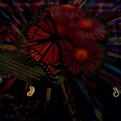 Psalms 16 Psalm 16, Dandelion, Faith, Mom, Flowers, Artwork, Plants, Paintings, Work Of Art