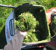 Materials for Composting - Composting for the Homeowner - University of Illinois Extension