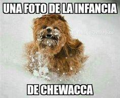 videoswatsapp.com imagenes chistosas videos graciosos memes risas gifs chistes divertidas humor http://ift.tt/2gAa6FL