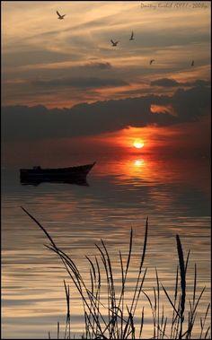 Un magnifique coucher de soleil ....