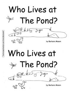 Science & Water Activities for a Day at the Pond
