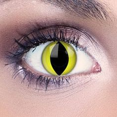 Get a shocking new look with these  Yellow Cat Contact Lenses . These…