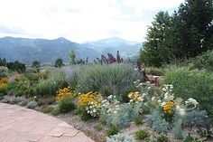 Colorado Springs Xeriscape Demonstration Garden with Garden of the Gods in the background. Colorado Landscaping, Backyard Landscaping, Landscaping Ideas, Dessert Landscaping, High Desert Landscaping, Succulent Landscaping, Desert Landscape, Backyard Ideas, Colorado Springs