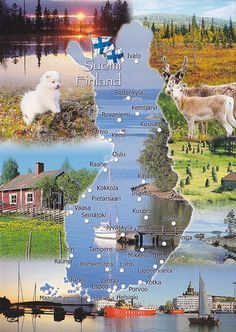 As you see, there`s more than snow in Finland! Helsinki, Finland Country, Alaska, Finnish Language, Scandinavian Countries, Beautiful Places To Visit, Travel Posters, Places To Travel, Beautiful Pictures