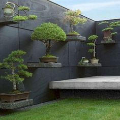 home zen garden ideas * home zen garden ; home zen garden backyards ; home zen garden ideas ; buddha statue home zen gardens ; buddha home decor zen gardens ; zen garden home interior design ; zen garden at home ; home made zen garden Bonsai Plants, Bonsai Garden, Bonsai Trees, Back Gardens, Outdoor Gardens, Hanging Gardens, Zen Gardens, Outdoor Patios, Outdoor Spaces