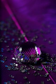 40 Macro Photographs of Water Drops gathered from Deviant Art. very beautiful macro photography, dew drops, water drops photographers Purple Rain, Deep Purple, Purple Love, Purple Stuff, Purple Lilac, All Things Purple, Shades Of Purple, Red And Blue, Purple Glitter