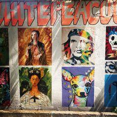White peacock wall art seminyak