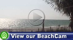 Link to view one of my favorite places, web cam at The Mucky Duck on Captiva Island in Florida.  Best viewed at sunset!