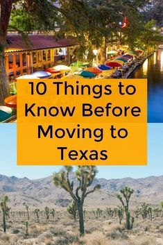 564e7c8875c92585576a8760b9dca09c - Newcomers Guide To Gardening In North Texas